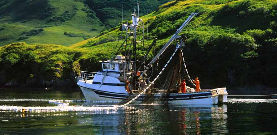 Crew Working on Purse Seine Boat in Alaska
