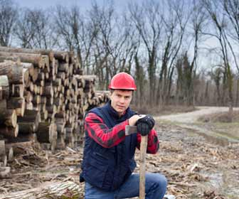Lumberjack Posed for Photo