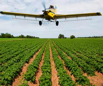 Crop Duster Applying Fertilizer to Farm Crops Photo